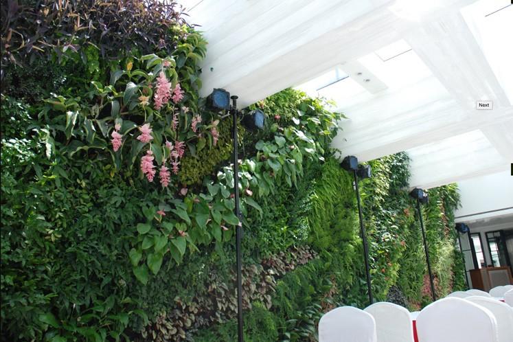 Das Lan Reastaurant in Shanghai mit verschiedenem Blattwerk und Orchideen. Auch ein Design von Patric Blanc