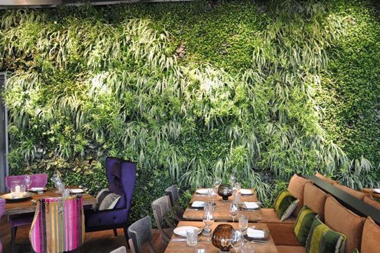 Ein weiteres asiatisches Restaurant mit üppiger, grüner Wandbepflanzung.
